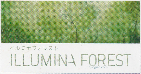 illumina_forest_img