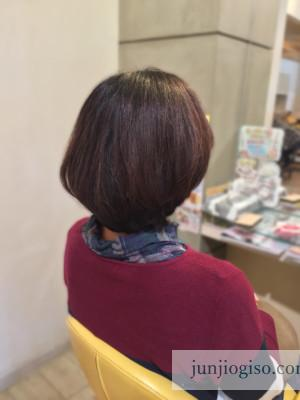 haircolor_blueviolet6lv_backstyle