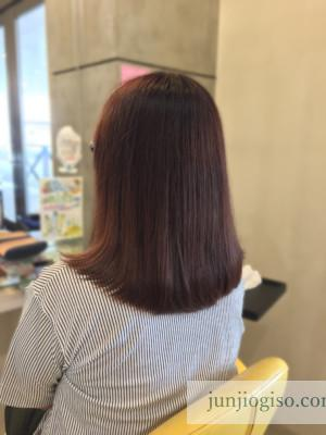 haircolor_pink9level_backstyle2