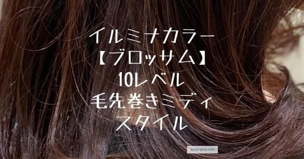 イルミナカラーブロッサム10レベルアイキャッチ