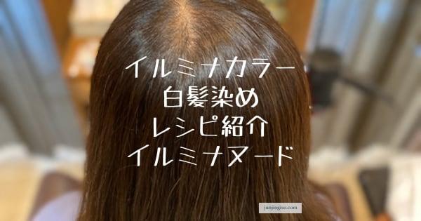 イルミナカラー白髪染めレシピ紹介イルミナヌード