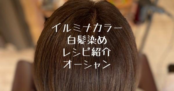 イルミナカラー白髪染め レシピ紹介オーシャン